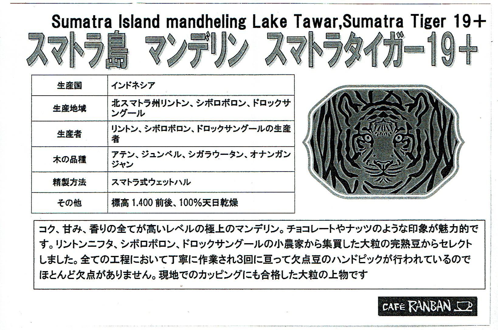 カフェ ランバン:インドネシア スマトラ島 マンデリン スマトラタイガー 19+とスマトラタイガー ブルーアイ