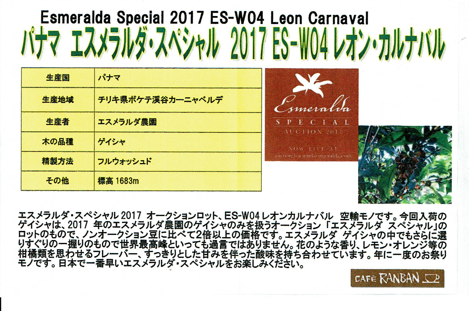 カフェ ランバン:パナマ エスメラルダスペシャル2017 オークションロット ES-W04 レオン・カルナバル