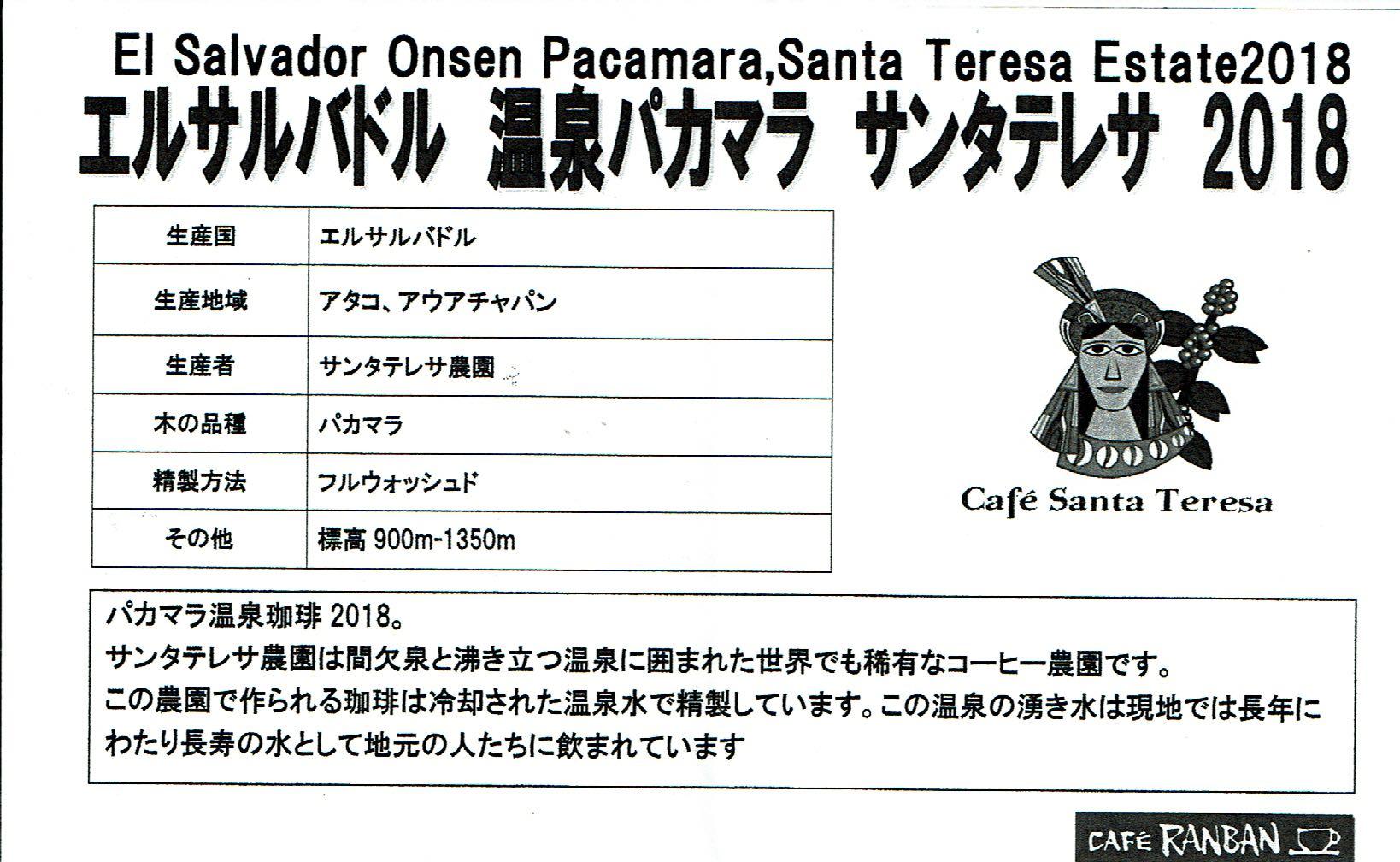 カフェ ランバン:エルサルバドル サンタテレサ農園 温泉パカマラ