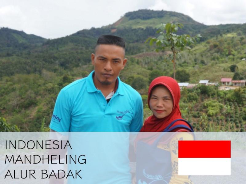 丸美珈琲店:インドネシア マンデリン アルールバダ