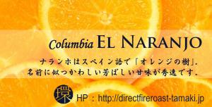 Direct Fire Roast 環:コロンビア エル・ナランホと環水出し珈琲
