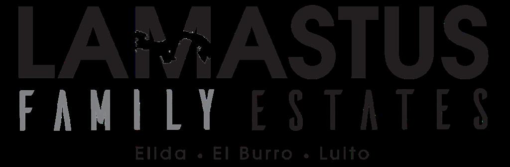 パナマ ラマスタス・ファミリー・エステーツ エリダ、エル・ブーロ、ベスト・オブ・パナマ