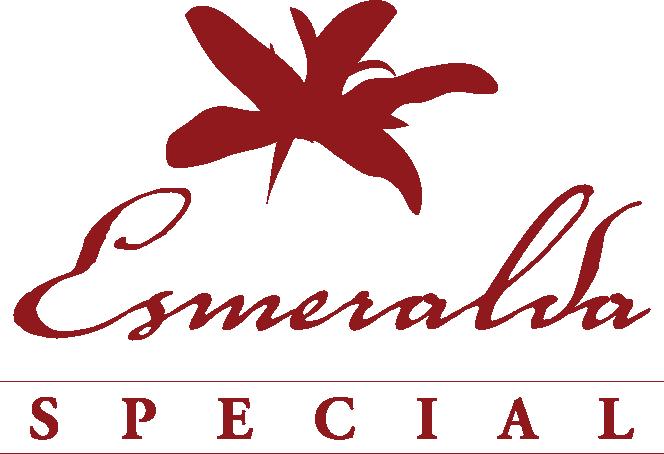 サザコーヒー:パナマ エスメラルダ農園 ゲイシャ スーパー・マリオ サン・ホセ ナチュラル ES-N-3-2
