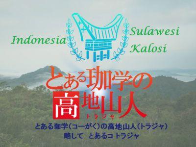 キーコーヒーと帰山人の珈琲遊戯:インドネシア スラウェシ島 トラジャ