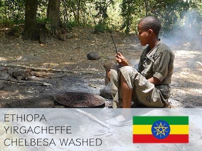 丸美珈琲店:エチオピア イルガチェフェ チェルベサ G-1 ウォッシュト