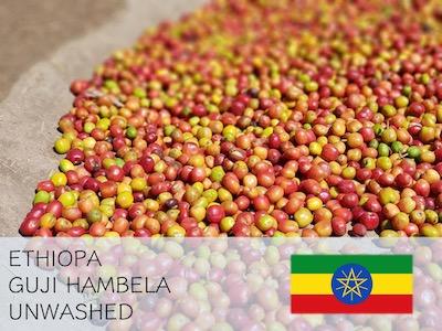 丸美珈琲店:エチオピア グジ ハンベラ ナチュラル