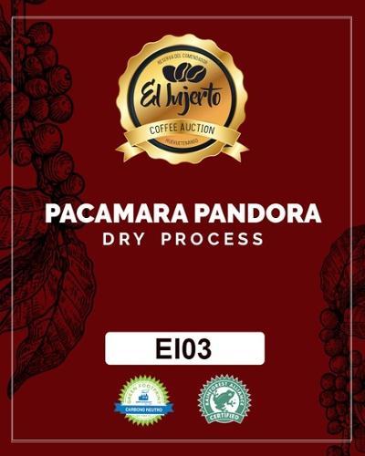 松屋コーヒー本店:グアテマラ エル・インヘルト農園 プライベート・オークション 2019 パカマラ パンドラ  EI03-02