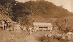 パナマコーヒー躍進の立役者:カサ・ルイス株式会社とベルリナ農園