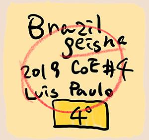 サザコーヒー:ブラジル サントゥアリオ・スール ゲイシャ ブラジル カップ・オブ・エクセレンス 2019年 第4位