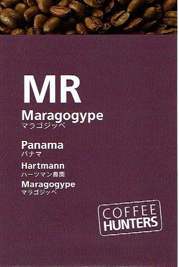 ミカフェート:COFEE HUNTERS パナマ ハーツマン農園 マラゴジッペ ナチュラル