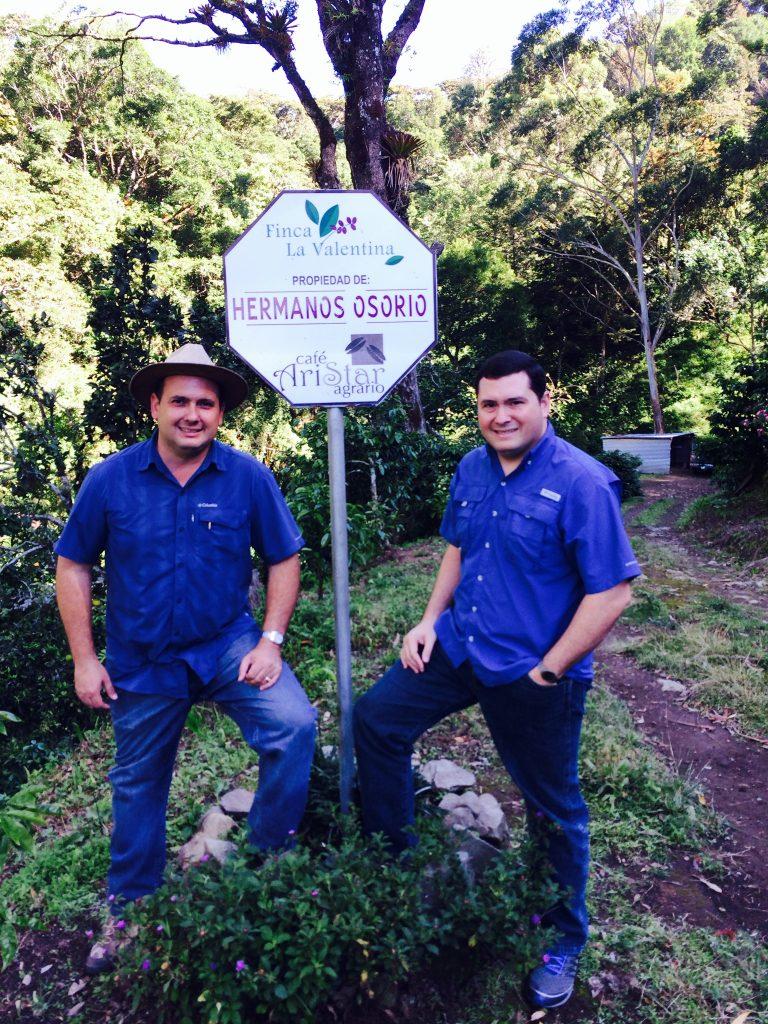 パナマのコーヒー農園(ボケテ地区):パナマ ヴァレンティーナ農園