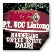 UCC直営農園:インドネシア UCC リントン・マンデリン・コーヒー農園