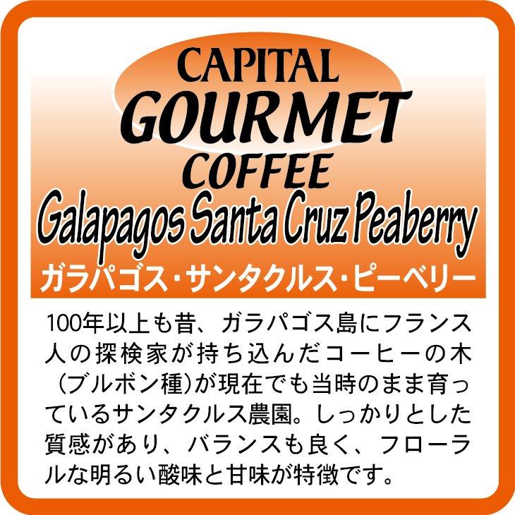 キャピタルコーヒー:ガラパゴス サンタクルス ピーベリー