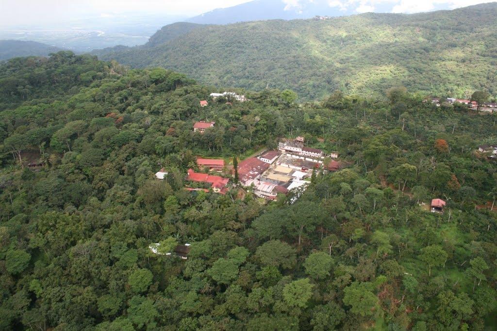 世界で最初のオーガニックコーヒー農園:メキシコ イルランダ農園
