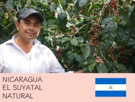 丸美珈琲店:ニカラグア スヤタル農園 ナチュラル